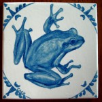 Western chorus frog -- gifted