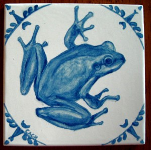 Western chorus frog -- gifted