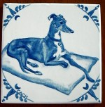 Greyhound -- gifted