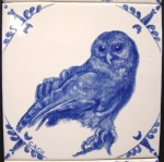 Barred owl -- sold
