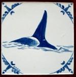 Orca, a.k.a. killer whale