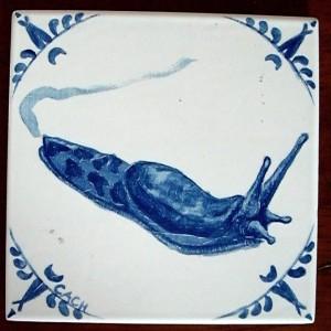 Banana slug -- gifted