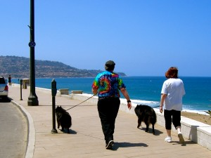 Harry and Susan, Blitz and Belle walking along the waterfront of Redondo Beach.