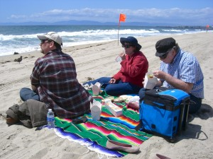 Picnic on the beach! Now that's a picnic with a view.