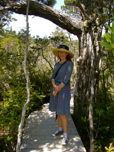 Why I chose to pose by the largest tree in the pygmy forest, I don't know.