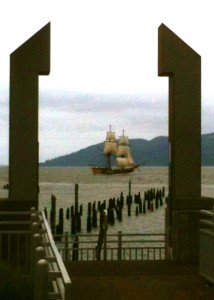 The Lady Washington, under sail.