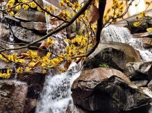 waterfall_garden_park